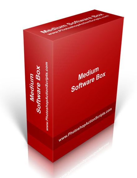 Medium Software Box